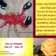 Sun in Scorpio - Happy birthday to those born under the sign of Scorpio! October 23 - November 22