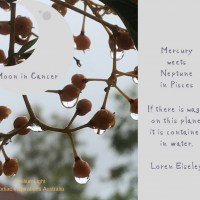 Moon in Cancer during Mercury & Neptune annual meeting to inspire ourselves!