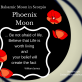 Moon in Scorpio - Balsamic Phase - November 27 & 28 2016