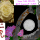 Full Moon in Taurus to unite our Body & Soul enjoying the simplicity of nature by releasing our fears just like a blooming Rose…