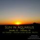 Sun in Aquarius - January 20 - February 18 - Happy Birthday!!!