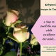 Moon in Taurus in Balsamic phase invites us to smell the roses to silence our mind… preparing us for New Moon in Gemini...