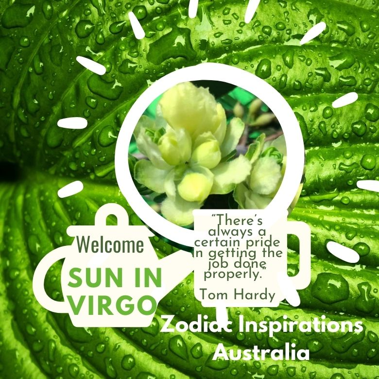 Sun in Virgo ☀️♍️- 23 August to 22 September @11:31 pm - Australia AEST